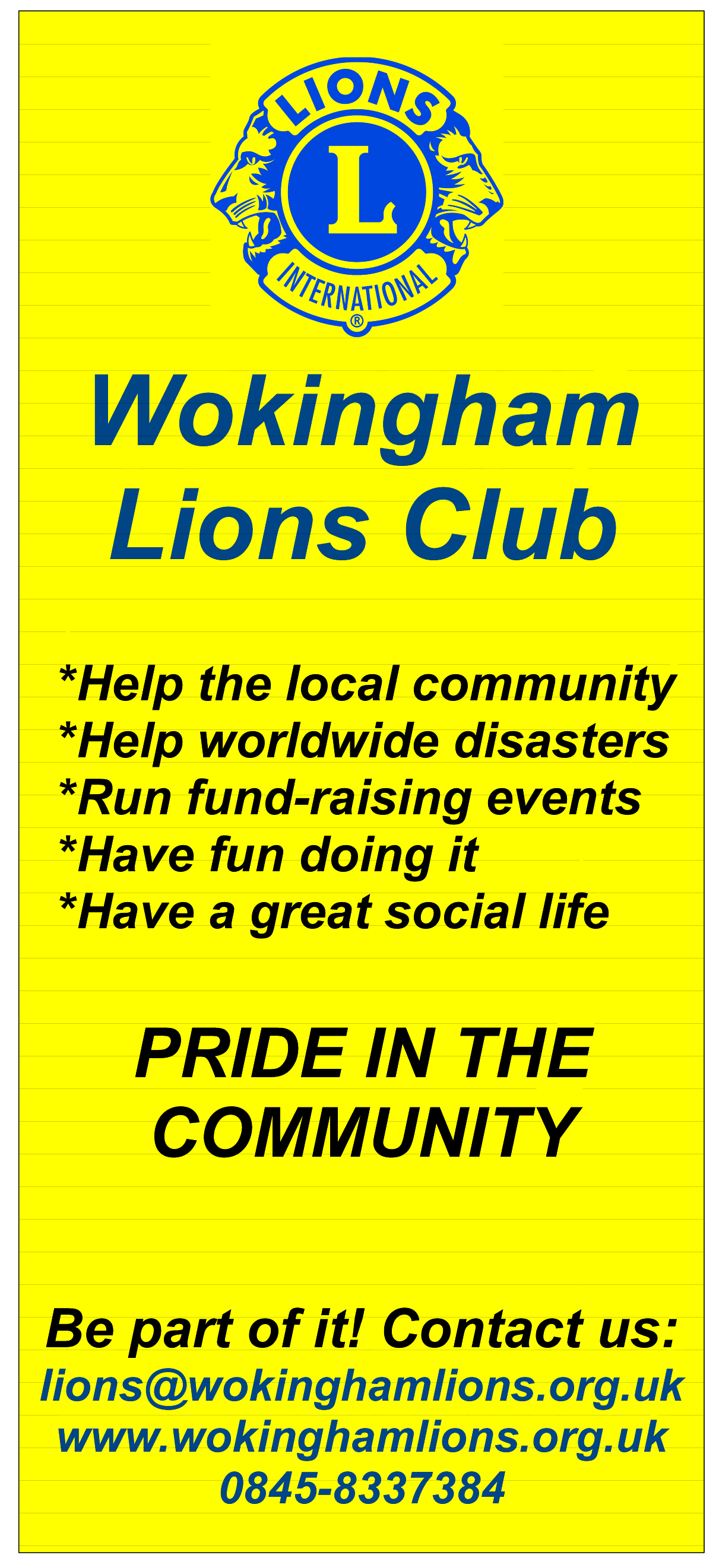 Lions Pull-up Banner